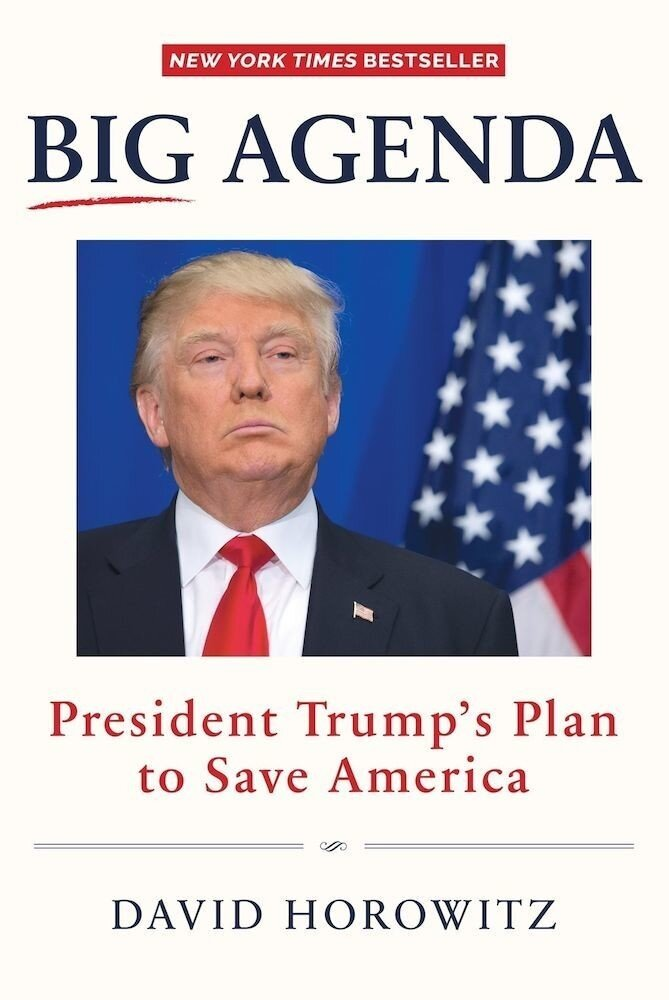 Big Agenda : President Trumps Plan To Save America
