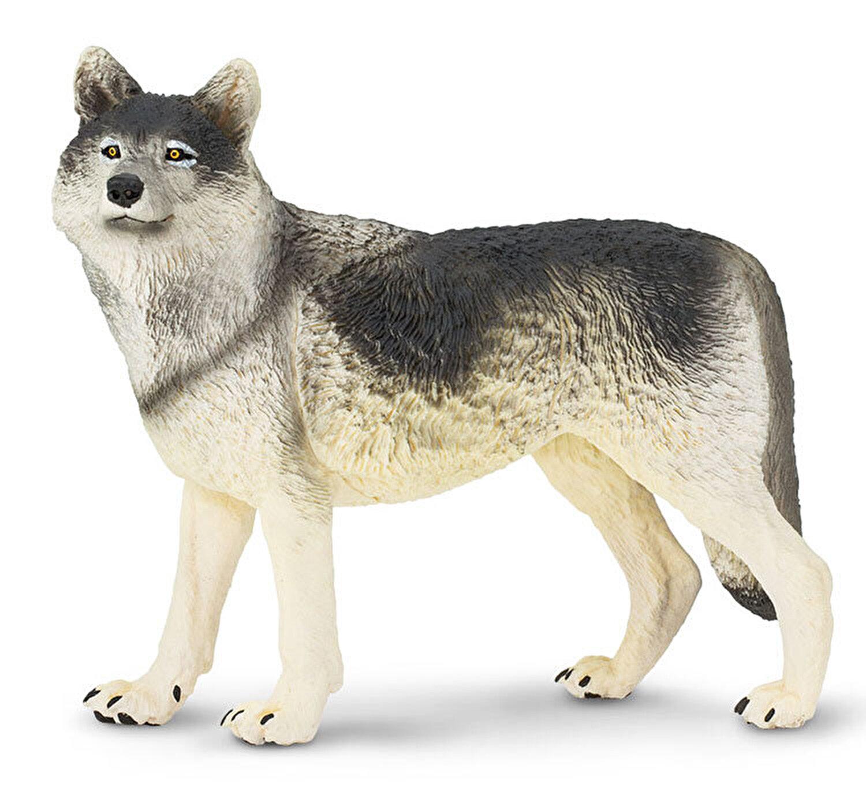 nina lupi pierdere în greutate)