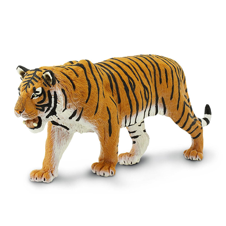pierderea în greutate tigru nuci