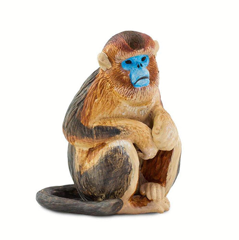 pierderea în greutate de maimuță)