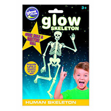 The Original Glowstars Company Jucarie educativa - Schelet uman fosforescent