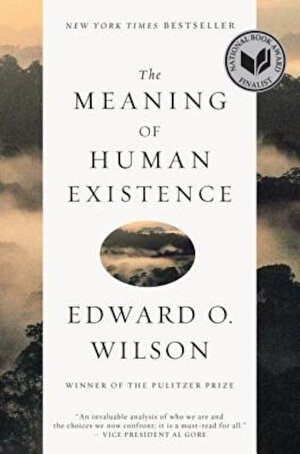The Meaning of Human Existence, Paperback
