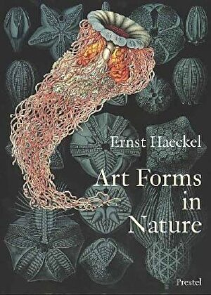 Art Forms in Nature: The Prints of Ernst Haeckel, Paperback