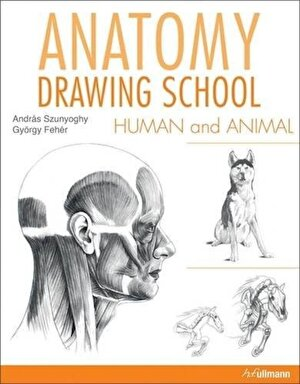 Anatomy Drawing School