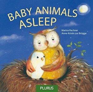 Baby Animals Asleep