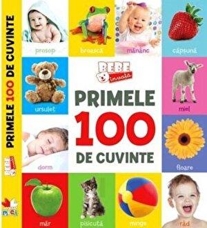 Primele 100 de cuvinte. Bebe invata