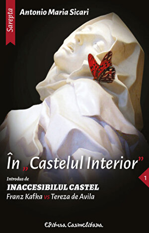 In castelul interior (eBook)