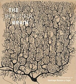 The Beautiful Brain: The Drawings of Santiago Ramon y Cajal, Hardcover