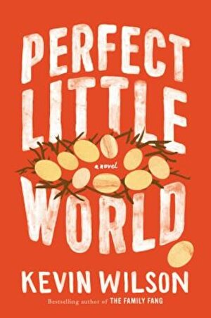 Perfect Little World, Hardcover