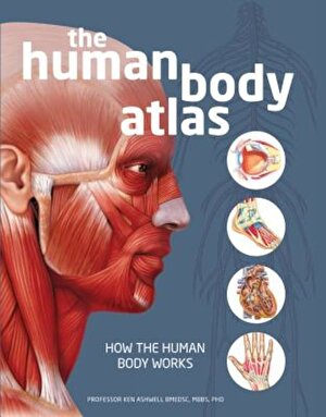 The Human Body Atlas: How the Human Body Works, Hardcover