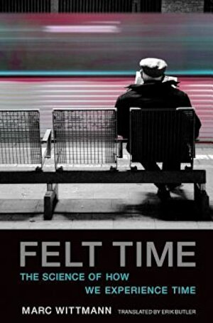 Felt Time: The Science of How We Experience Time, Paperback