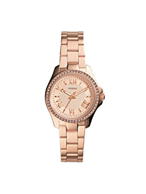Ceas Fossil Cecile Small AM4578
