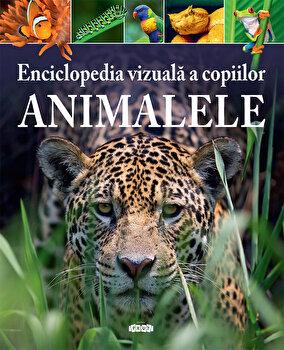 Enciclopedia vizuala a copiilor. Animalele/Michael Leach, Meriel Lland
