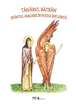 Tanarul batran. Sfantul Macarie in pustia inflorita/Petru Vornic de la Via