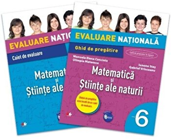 Evaluare nationala. Matematica si stiinte ale naturii. Ghid de pregatire. Clasa a VI-a/*** de la Litera educational