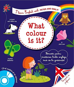 I learn english what color is it/Larousse de la RAO
