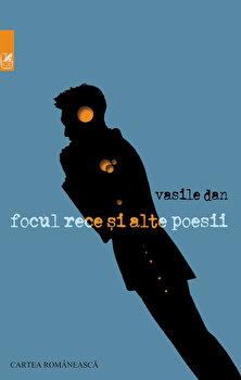 Focul rece si alte poesii/Vasile Dan