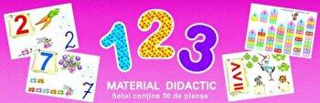 Planse – 123/*** de la Dorinta