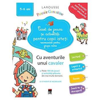 Caiet de jocuri si activitati pentru copii isteti (grupa mare)/Larousse de la RAO