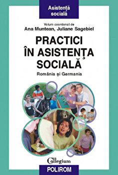 Practici in asistenta sociala. Romania si Germania/Ana Muntean, Juliane Sagebiel de la Polirom