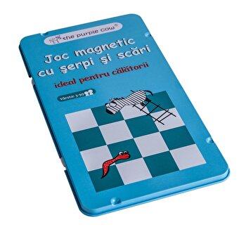 Joc magnetic – Serpi si scari de la Momki