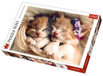 Puzzle Pisicute somnoroase, 500 piese
