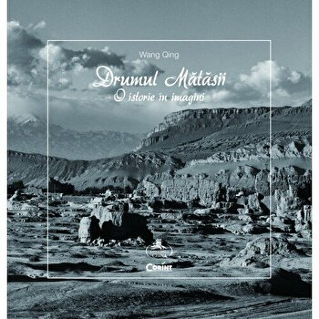 Drumul matasii. O istorie in imagini/Wang Qing de la Corint