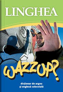 Wazzup' Dictionar de argou si engleza colocviala/*** de la Linghea