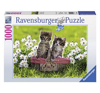 Puzzle Picnic cu pisicute, 1000 piese de la Ravensburger
