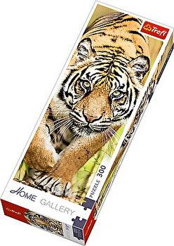 Puzzle panoramic Tigru, 300 piese de la Trefl