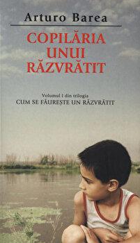 Copilaria unui razvratit, Cum se faureste un razvratit, Vol. 1/Arturo Barea de la RAO