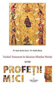 Profetii mici. Vechiul Testament in talcuirea Sfintilor Parinti/Pr. Ioan Sorin Usca de la Christiana