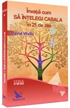 Invata cum sa intelegi cabala in 21 de zile/David Wells