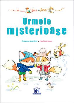 Jumi si Juma: Urmele misterioase/Fabienne Blanchut, Camille Dubois de la DIDACTICA PUBLISHING HOUSE