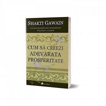 Cum sa creezi adevarata prosperitate/Shakti Gawain de la Act si Politon