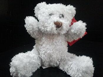 Teddy. Un cadou special/***