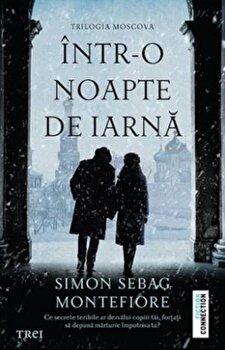 Intr-o noapte de iarna/***