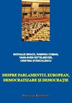Despre Parlamentul European, democratizare si democratie/Nathale Barack, Ramona Coman, Yann-Sven Rittelmeyer, Cristina Stanculescu