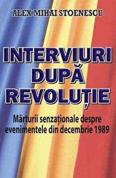 Interviuri dupa Revolutie/Alex Mihai Stoenescu
