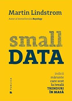 Small Data Indicii marunte care scot la iveala trenduri in masa/Martin Lindstrom de la Publica