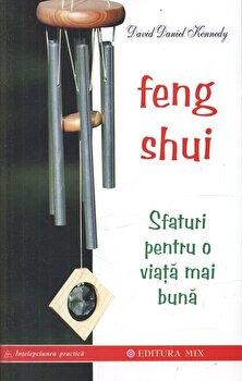 Feng Shui. Sfaturi pentru o viata mai buna/David Daniel Kennedy de la Mix