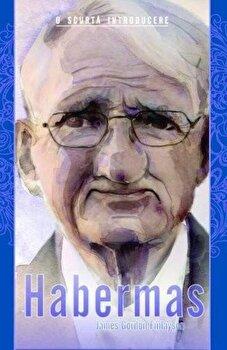 Habermas. O scurta introducere/James Gordon Finlayson de la ALL
