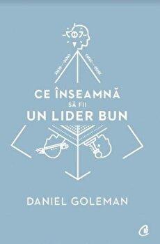 Ce inseamna sa fii un lider bun/Daniel Goleman de la Curtea Veche