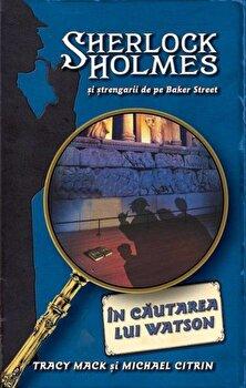 In cautarea lui Watson, Sherlock Holmes si strengarii de pe Baker Street, Vol. 3/Tracy Mack, Michael Citrin de la RAO