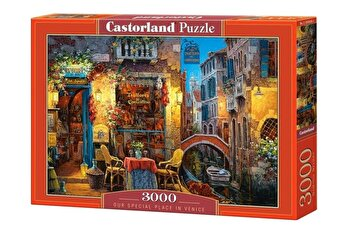 Puzzle Our special place in Venice, 3000 piese