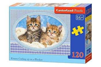 Puzzle Pisicute pe paturica, 120 piese de la Castorland