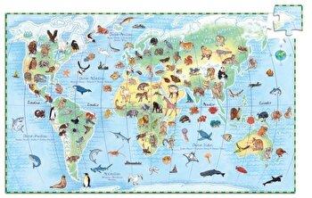 Puzzle observatie – Animalele lumii, 100 piese de la Djeco