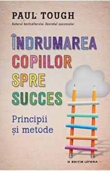 Indrumarea copiilor spre succes. Principii si metode/Paul Tough