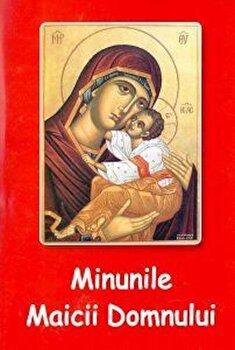Minunile Maicii Domnului/Protos. Nicodim Mandita de la Agapis