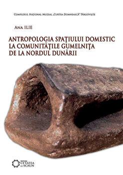 Antropologia spatiului domestic la comunitatile Gumelnita de la nordul Dunarii/Ana Ilie de la Cetatea de Scaun